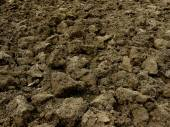 Freshly ploughed field — Stock Photo
