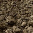 Freshly ploughed field — Stock Photo #58412949