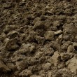 Freshly ploughed field — Stock Photo #58413017