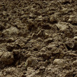 Freshly ploughed field — Stock Photo #60577757