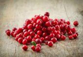 Fresh raw cowberries — Stock Photo