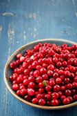 Bowl of cowberries — Stock Photo