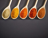 Various kinds of spices — Stock Photo