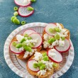 Toasted bread with radish and cottage cheese — Stock Photo #78795858