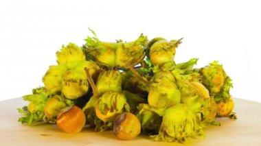 Fresh hazelnuts rotate — Stock Video