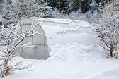 Hothouse brought by snow in the winter — Stock Photo