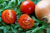 The cut tomatoes and green salad — Stock Photo