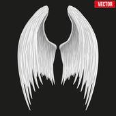 Blanc plié des ailes d'ange. vector. — Vecteur