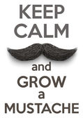 Keep Calm and grow a Mustaches — Stock Vector