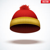 Knitted woolen cap. Winter seasonal colorful hat. vector illustration — Stock Vector