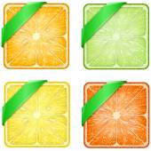 Set of Square fruits slices with Green ribbon. — Foto de Stock