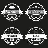 Set of Vintage SKI and Snowboard Club Badge Label — Stock vektor