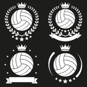 Set of Vintage Volleyball Club Badge and Label — Stock vektor