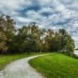 Path in autumn park — Stock Photo #55625317