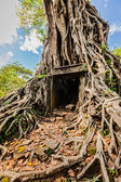 Sambor Prei Kuk temple ruins, Cambodia — Stock Photo