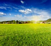 Countryside meadow field with sun and blue sky — Stock Photo