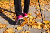Stavgångpro nordic walking — Stock fotografie