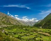 Valle in himalaya — Foto Stock