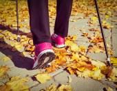 Nordic-walking — Stockfoto