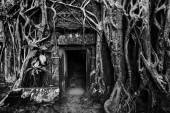 Ancient stone door and tree roots, Angkor temple — Stock fotografie