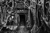 Ancient stone door and tree roots, Angkor temple — Foto de Stock