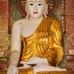 Buddha statue in Shwedagon pagoda — Stock Photo #66259007