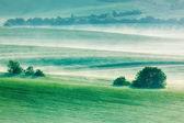 Moravian rolling fields in morning mist — Stock Photo