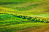 Abstract pattern of rolling fields — Stock Photo