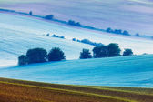 Rolling landscape of  South Moravia in the morning — Stock Photo