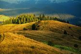 カルパティア山の日当たりの良い風景 — ストック写真