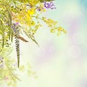 цветочный праздник фон — Стоковое фото