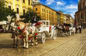 Horse carriages in Cracow — Stock Photo