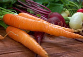 Fresh vegetable - carrot close up — Stock Photo