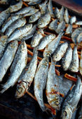 Baked herring — Stock Photo