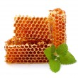 Honeycomb close up on the white  — Stock Photo #59595987