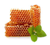Honeycomb close up on the white  — Stock Photo