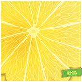 Just lemon background — Vector de stock