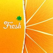 Fresh orange — Stock Vector