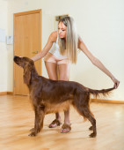 Adult girl with red Irish setter — Стоковое фото
