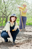 Two farmer's working — Stock Photo