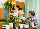 Pensioners  and girl  caring for decorative plants — Stock Photo