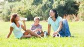 Smiling family  in sunny park — Stock Photo