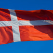 Flag of Denmark — Stock Photo #54978227