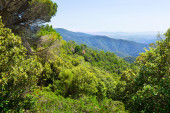 Pyrenees mountains from high point — Stock Photo