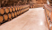 barrels in french wine cellar — Stock Photo