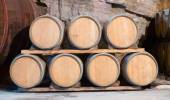 barrels at contemporary winemaker factory  — Stock Photo