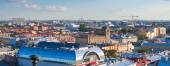 St.Petersburg from Saint Isaac's Cathedral   — Foto de Stock