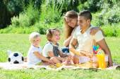 European family with children having picnic  — Photo