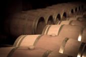 Toned image of  winery — Stock Photo