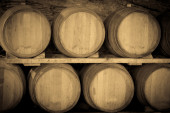 Toned image of  winery — Stock Photo